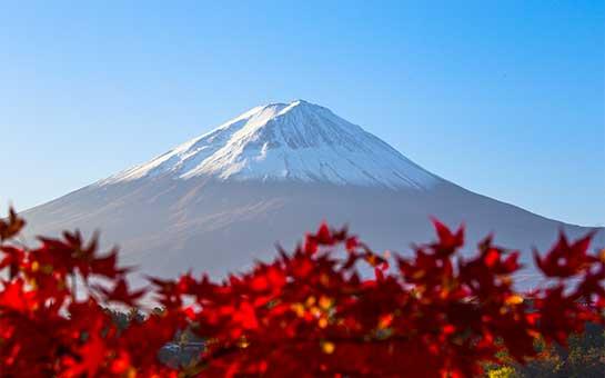 旅游保险与火山爆发